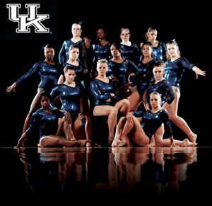 UK gymnastics! I have seen them before..  Nothing quite like it.