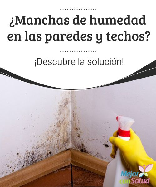¿Manchas de humedad en las paredes y techos? ¡Descubre la solución!   Descubre cómo eliminar las manchas de humedad en las paredes y los techos sin utilizar productos químicos agresivos.¡Inténtalo en casa!