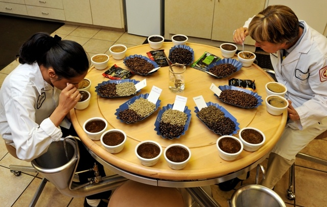 Coffee tasters: Coffee Misc, Coffee Tasters Wher, Coffee Pictures