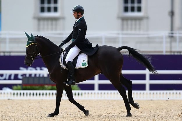 Tom Bombadill Too! | The 29 Prettiest Horses In The 2012 Olympics Eventing Competition