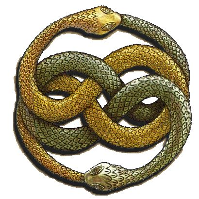 The Auryn