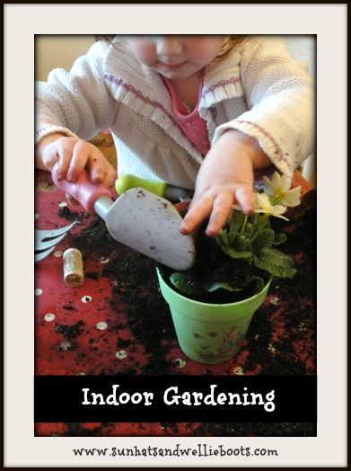 229 best images about exploring our world on pinterest for Indoor gardening lesson
