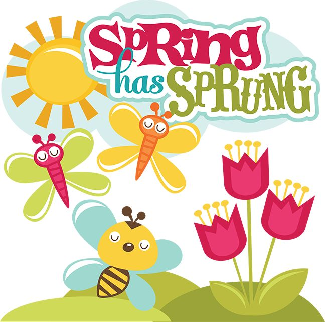 Spring Has Sprung SVG scrapbook collection svg files for scrapbooks spring cut files for scrapbooking