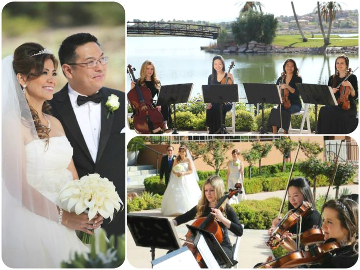 Premiere String Quartet Playing A Picturesque Wedding Ceremony In Andalusian Garden At The Westin CelloViolinString QuartetWedding MusicWedding