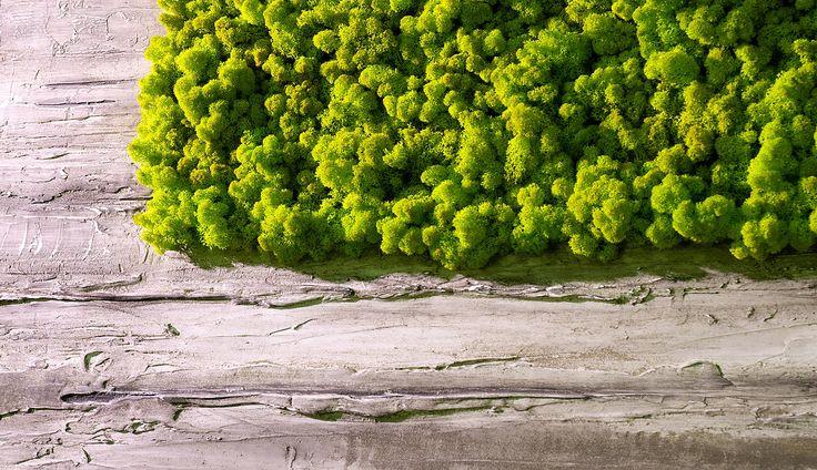 SAG Smart Acoustic Green