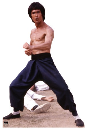 Bruce Lee The Man, The Legend, The Little Dragon on http://www.webnuggetz.com