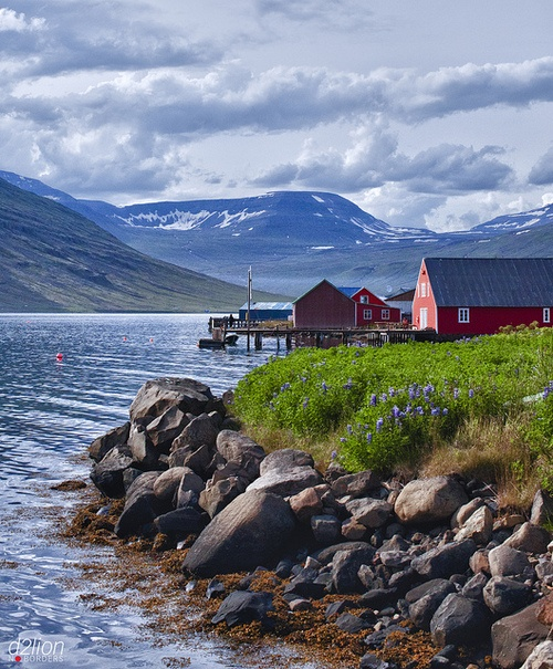 EASTERN FJORDS by euskadi 69 on Flickr.: Iceland Trips, Eastern Fjord, Posts, Photos Worth, Fáskrúðsfjörður, Amazing Iceland, Fjords De, Rivers, Call Wanderlust