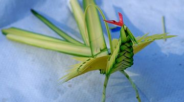 Palm Weaving Patterns | ... CCC's artist to weave palm leaves into butterfly and cricket. >>> more