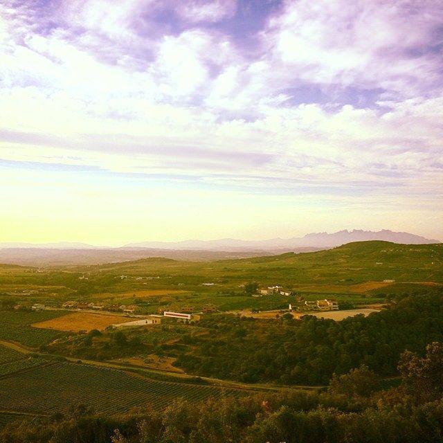 La Plana del #Penedes i #Montserrat des del mirador #Miravinya @enopenedes #LesGunyoles #Avinyonet #Enoturisme