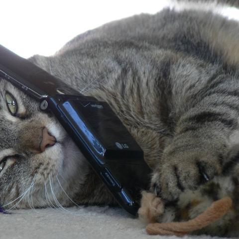 How to Send a Voice Message via Facebook #technology #tips #socialmedia