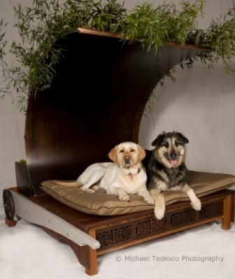 Furniture ideas boutique ideas products hosts pets furry friends