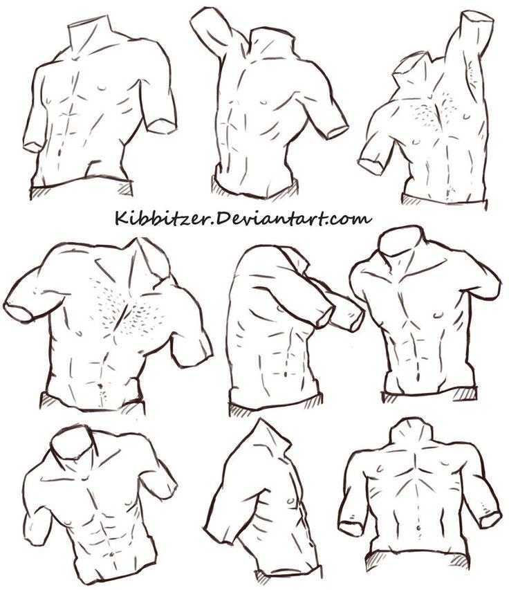 http://kibbitzer.deviantart.com/art/Male-Torso-Reference-Sheet-2-486560830