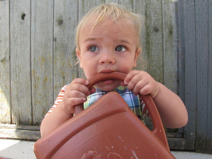 New FDA Ruling on Using Baby Teething Gels - Dr. Eva Sokal, DDS - www. eurodentalstudiony.com