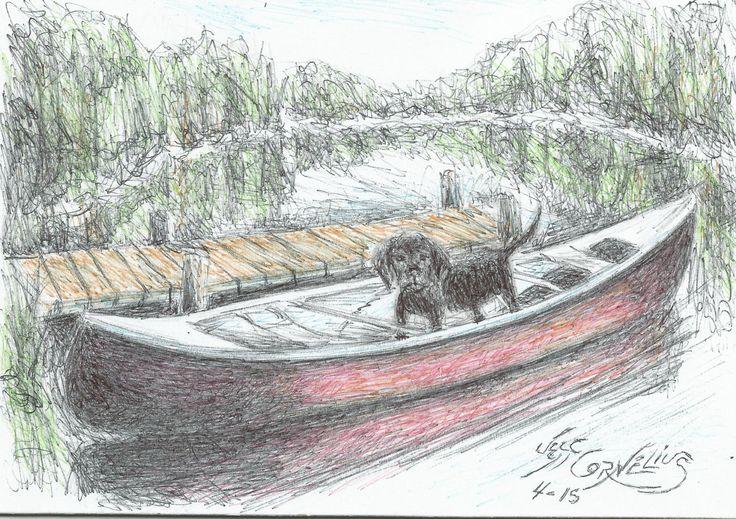 canoe puppy