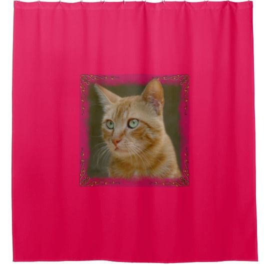 Ginger Cat Shower Curtain by www.zazzle.com/htgraphicdesigner* #zazzle #gift #giftidea #cat #pink #ginger #bathroom #catlovers