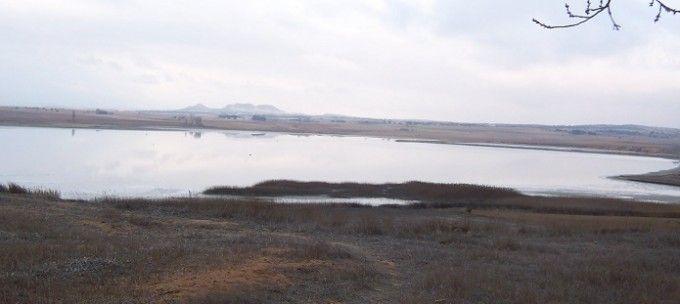 Solicitan que se revoque la caza de aves acuáticas en Complejo Lagunar de Pétrola