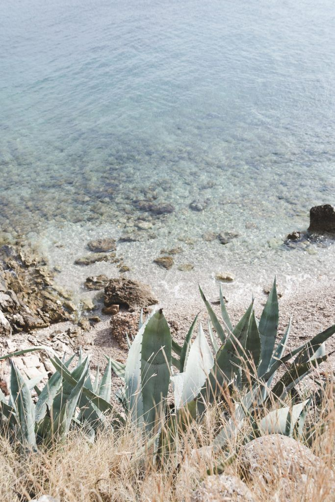 Agaves and the secret beach on Hvar - from travel blog http://Epepa.eu
