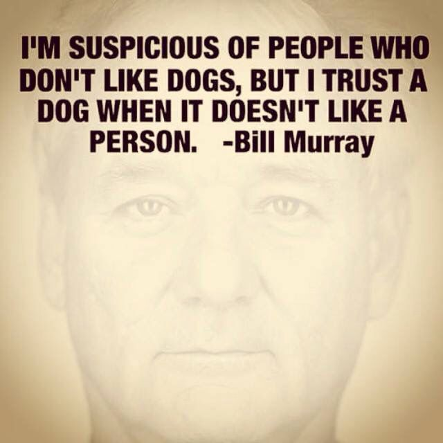 Bill Murray                                                                                                                                                     More