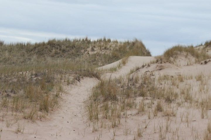 Mason County Growth Alliance To Connect Trails Between Four Coun - Northern Michigan's News Leader