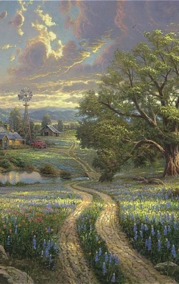 Road Into The Farm