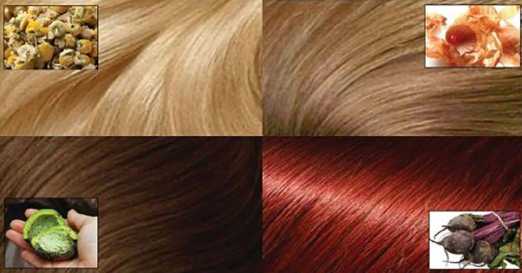 Vopsirea părului a devenit demult o parte componentă a ansamblului de îngrijire cosmetică a femeilor. Dar îţi poţi proteja părul de acţiunea nocivă a chimicalelor care se conţin în majoritatea vopselelor pentru păr? Perfect-ask.com vă propune câteva modalităţi de vopsire naturală a părului,cu ajutorul cărora puteţi schimba culoarea părului chiar şi în fiecare săptămână fără a dăuna sănătăţii părului, ci dimpotrivă – hrănindu-l şi întărindu-l! Vopsirea naturală a părului 1. Nuci pentru păr…