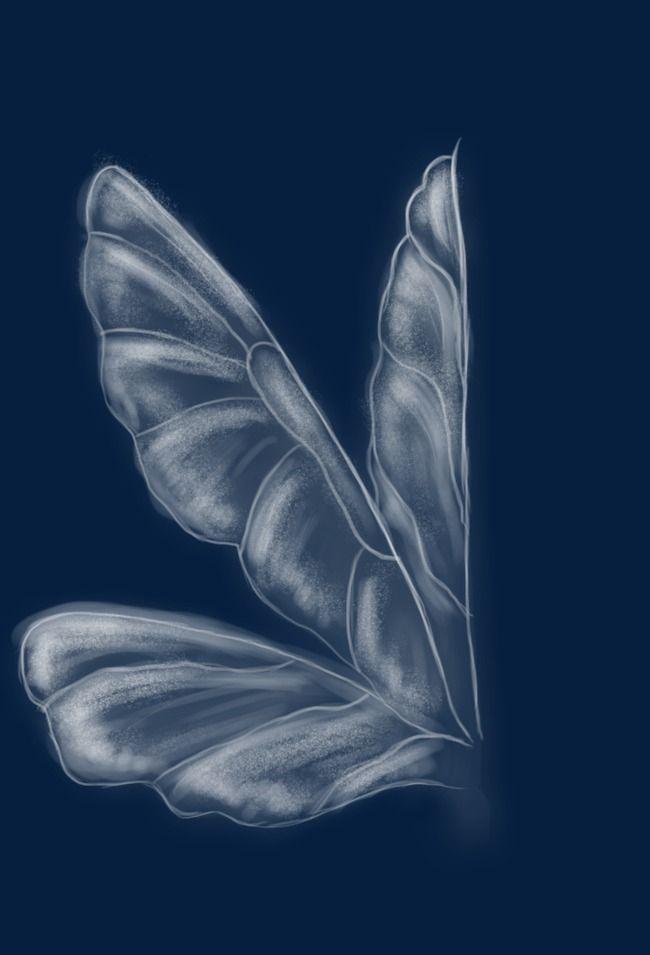 Wing Wings Wings Drawing Tinkerbell Wings