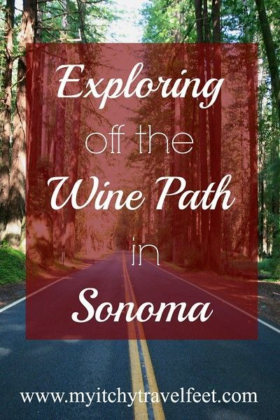 There are lots of things to do in Sonoma, for non-wine drinkers, or if you want to take a break from wine tasting. Discover the Sebastopol Farmers Market, The Barlow featuring sustainable products including a whiskey distillery and Kala Ukulele Factory in Petaluma. Include this non-wine fun on a Coastal California road trip. You'll be glad you did!