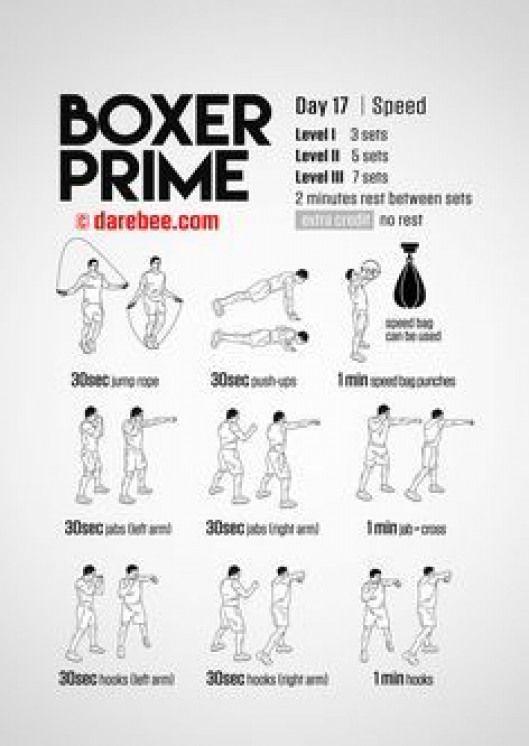 Boxer Prime 30 Day Fitness Program Home Boxing Workout Boxer Workout Boxing Training Workout