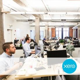 Accounting Made Fun: Work for Xero