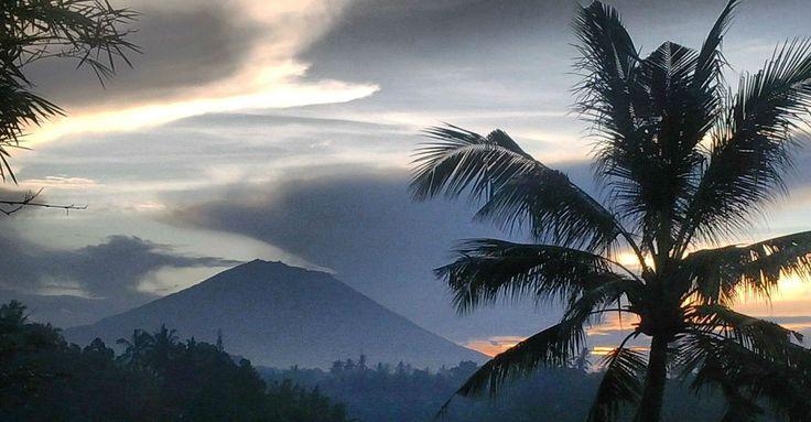 Artists Retreat in Bali March 1-8, 2015 http://yogaretreatsinbali.com/artists-retreat