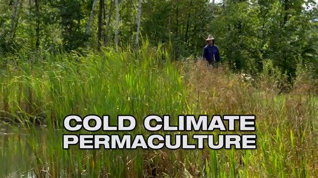 Cold Climate Permaculture. Geoff Lawton visits Ben Falk's permaculture farm in Vermont, where he even grows rice!