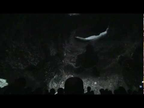 TurtleTrek Sea World Orlando, Full Show HD, Opening Day 4/27/12 3D 360 Degree Dome Theater