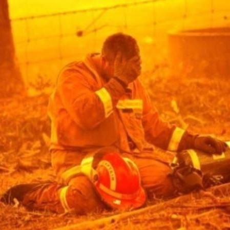 With a picture like this, what can you say thank goodness for the CFA