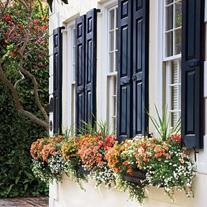 One simple rule to make window boxes like these more interesting – plant a thriller (something tall), like a spiky cordyline; a spiller (something to trail over the sides), like white bacopa; and colorful fillers, like yellow million bells, coral twinspur, and orange snapdragons.