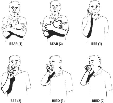 swear words in sign language wwwpixsharkcom images