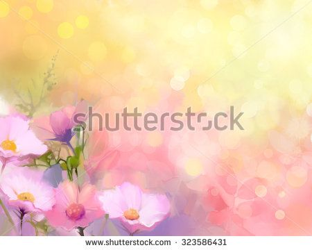 Oil painting nature grass flowers. Hand paint close up pink cosmos flower, pastel floral and shallow depth of field. Blurred nature background.Spring flowers background with bokeh - stock photo