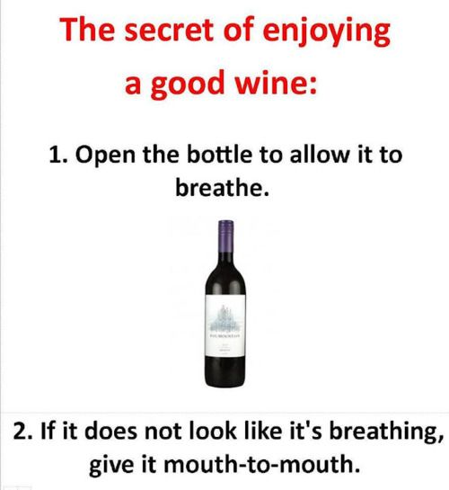Funny!: Wine, Laughing, Quotes, Giggl, Humor, Smile, Drinks, Funnies Stuff, The Secret