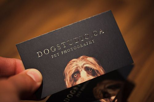 New DogStudio Business Cards Arrived - Dog Studio Photography Blog