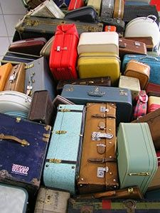 Do you really think your suitcase couldn't pick up bed bugs?