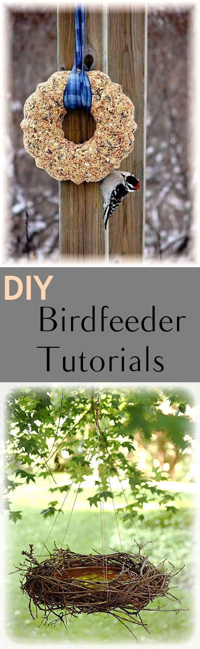 Great ideas for homemade birdfeeders.  Great ideas and tutorials for DIY birdfeeders. Fun projects and designs to feed the birds!