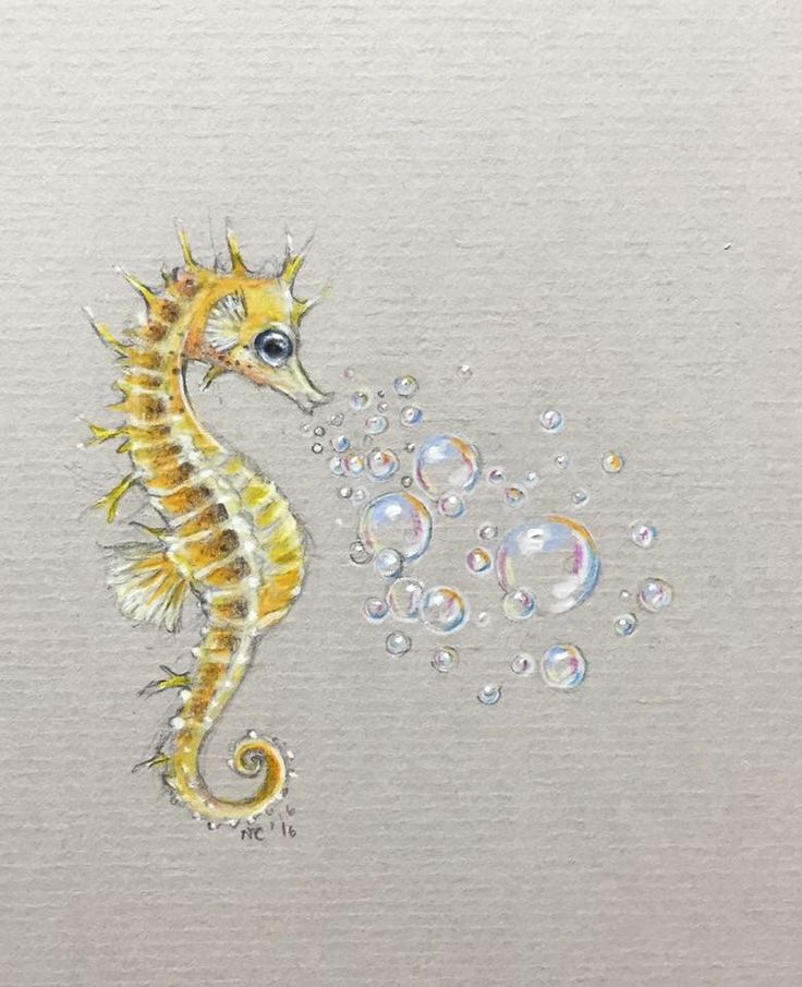 Seahorse I want as a tattoo                                                                                                                                                     More