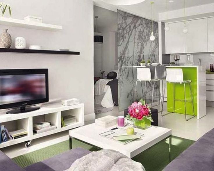Cute well lit apartment space with living, kitchenette and separate bedroom area
