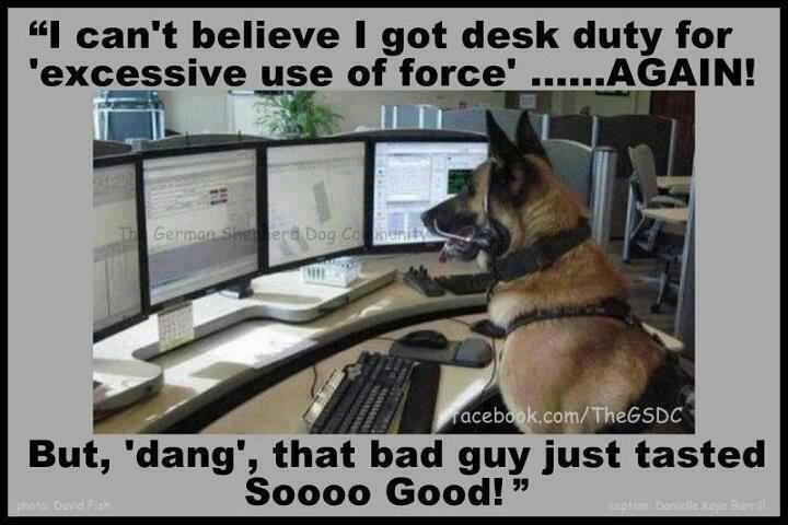 """2012.12.24 letvent.com post---""""COP HUMOR"""" desk duty 14"""
