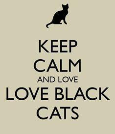 Adopt a Black cat! www.poainc.org #blackcats