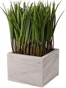 Искусственное растение 11 х 11 х 21 см