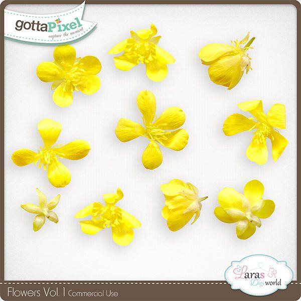 Flowers Vol. 1