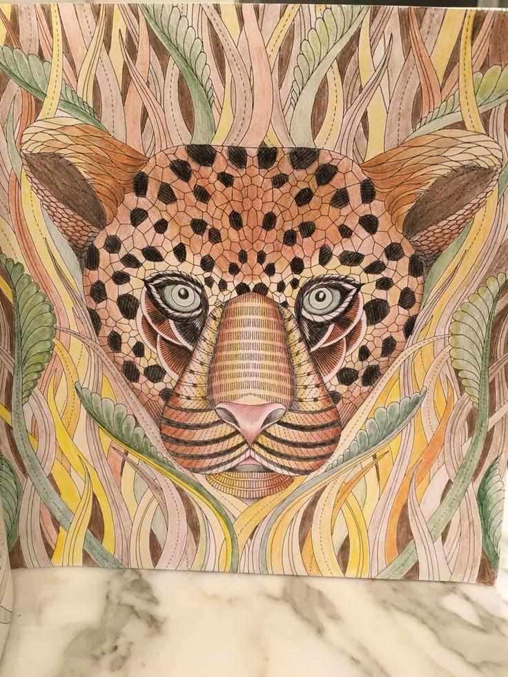 Tropical World Millie Marotta Coloring BooksAdult ColoringColouringColored PencilsWonderlandBooks