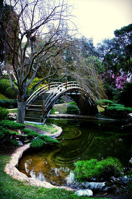 Huntington Japanese Botanical Garden / Huntington Library / San Marino / Los Angeles / CA, USA