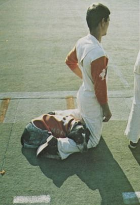 Smokey III, Tennessee Volunteers mascot, takes a nap while his handler watches the Vols game, ca. 1975.
