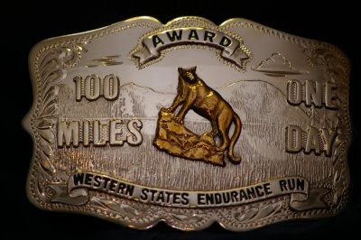 Eric Johnson's Adventures On The Trail: Western States 100 Mile Run